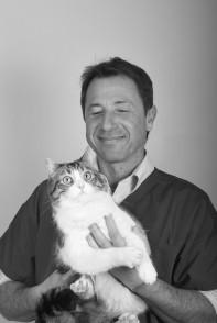 chats chiens des vétérinaires